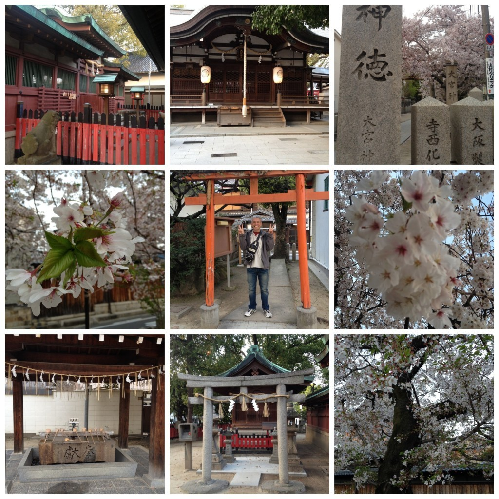 A shrine in Sembayashi-omiya just around the corner from our apartment