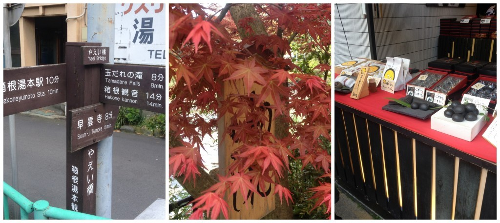 Images from Hakone