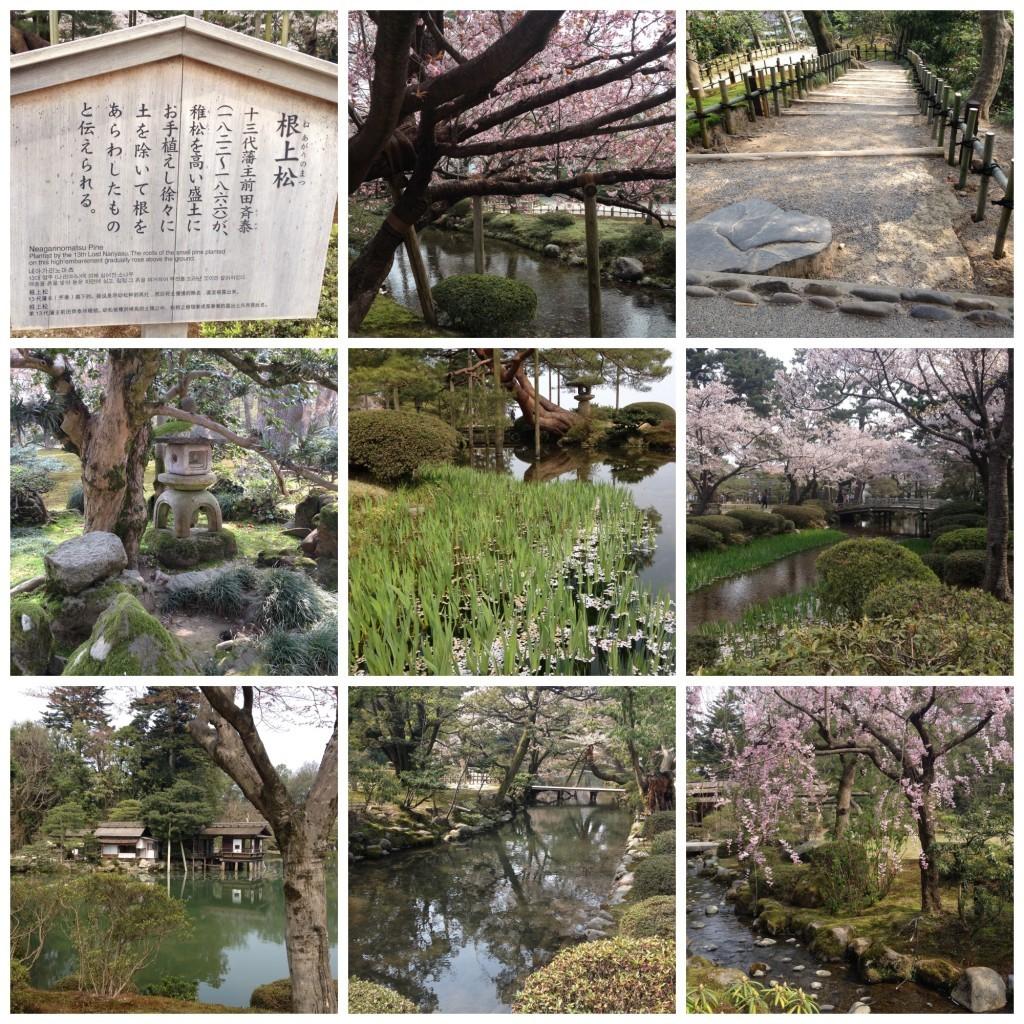 More Kenrokuen garden images