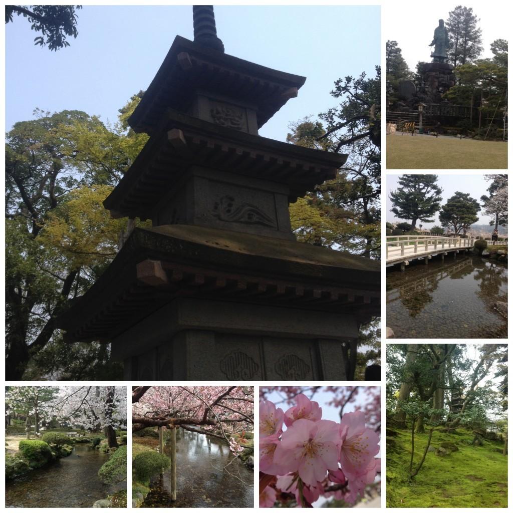 Wonderful colours of Kenrokuen garden