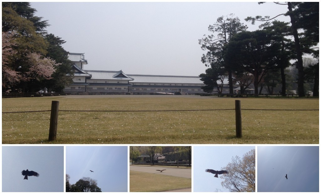 Looking at the vast space that Kanazawa Castle occupies