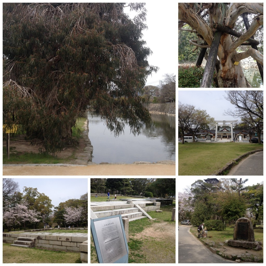 Various remains at Hiroshima castle site and the Eucalyptus tree that survived from the A-bomb