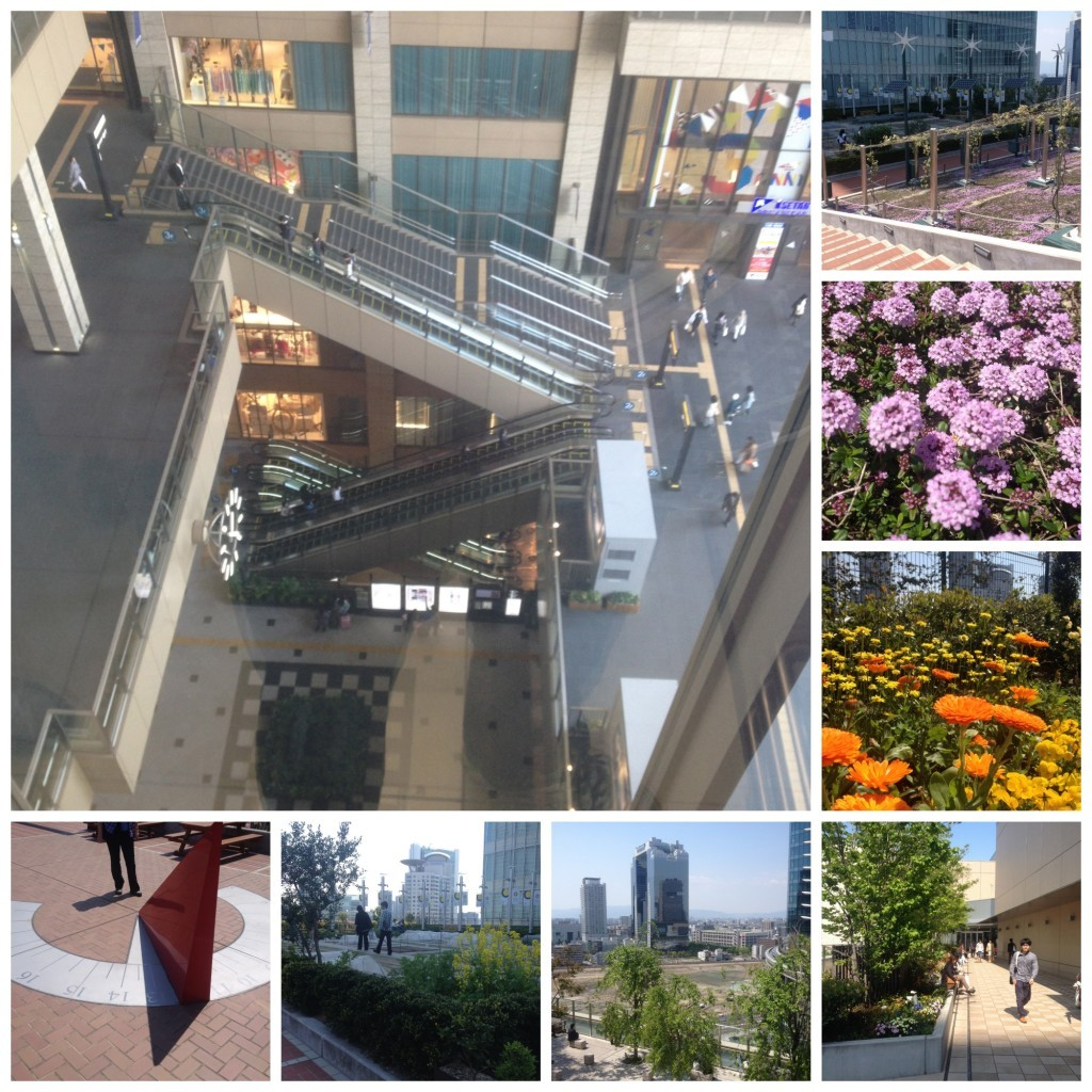 The garden at the top of the Umeda building