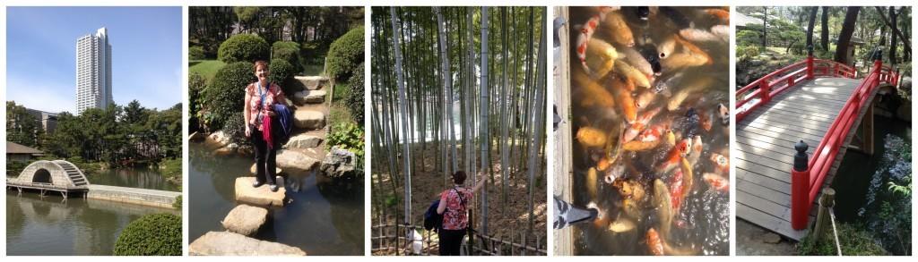 ponds, bambo, carp, bridges and stepping stones