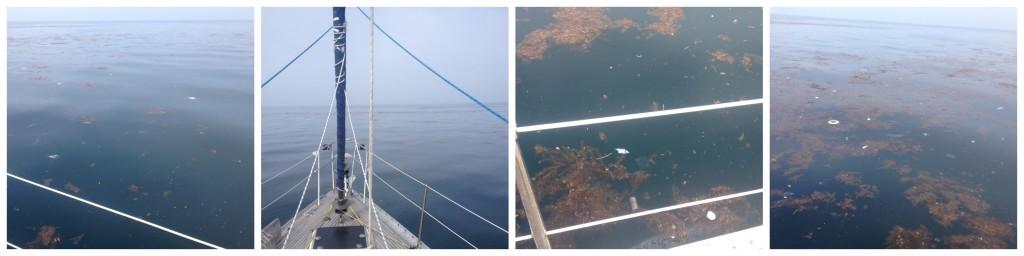 Big Elle in the dirty seas