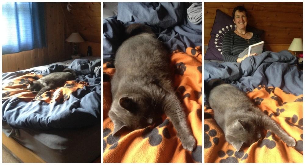 Guffer the cat and Moni