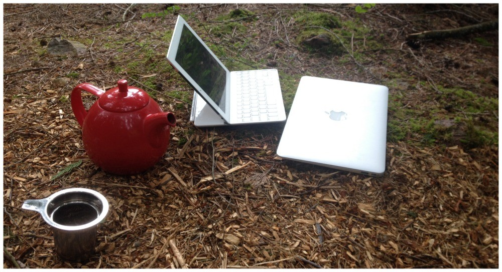 In the garden with the red teapot