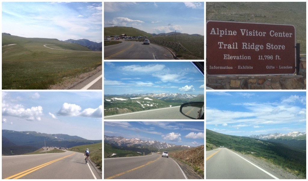 On the way down to the Alpine Visitor Center at