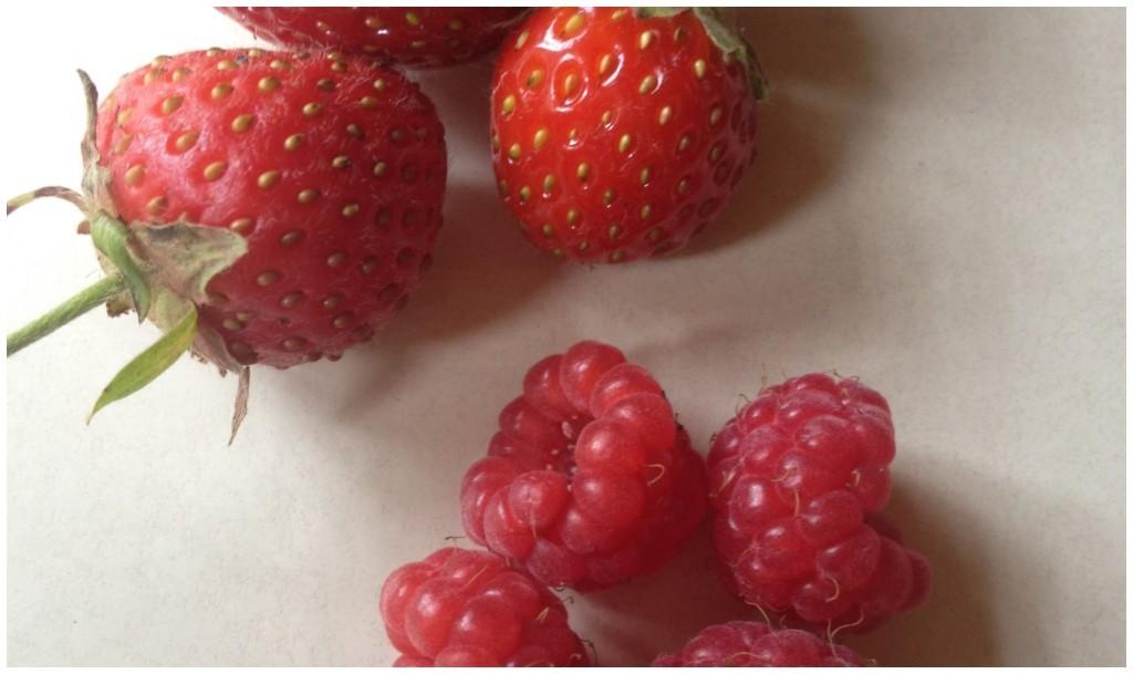 Wonderful fresh garden berries