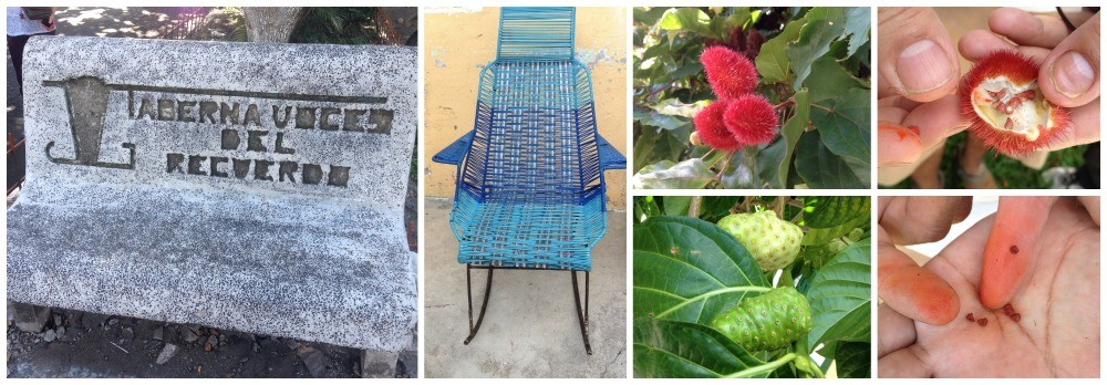 The seats of Mariquita and some of the flowers