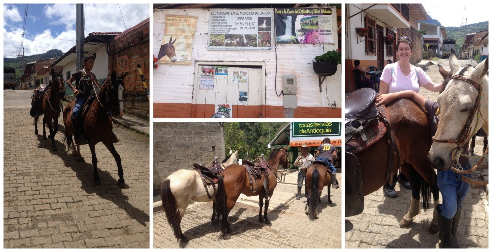 Horse riding tours in Jardin