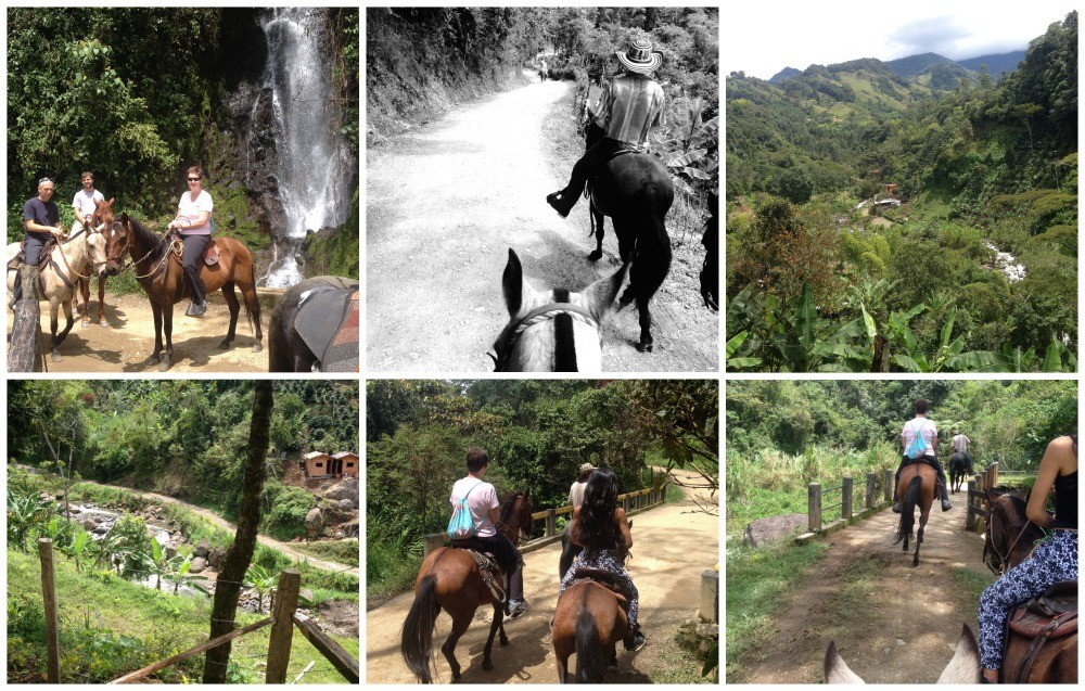 Horse riding tour in Jardin