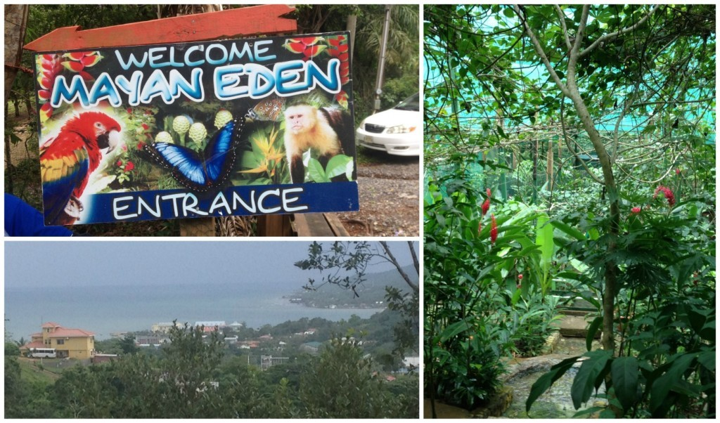 Mayan Eden at Mahogany Bay in Roatan