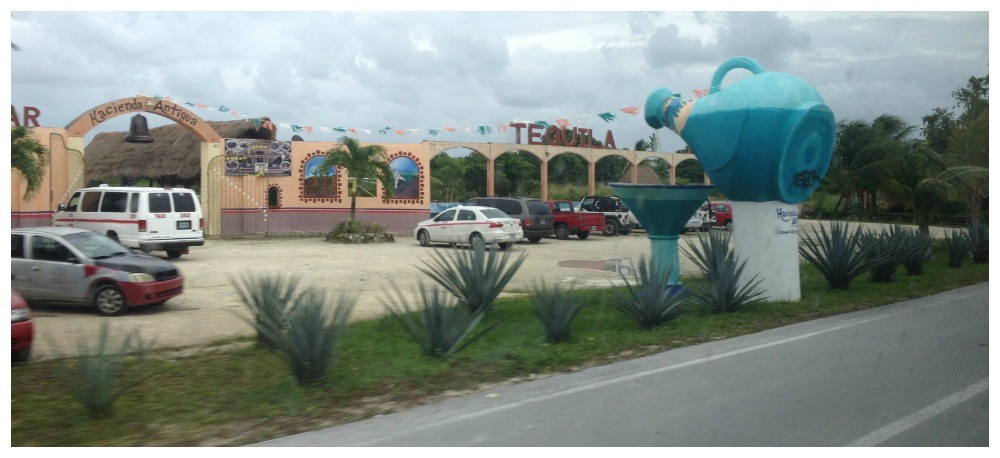 The Tequila place in Cozumel