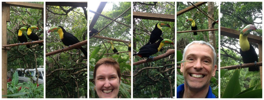 Unforgetable moments with the Toucans