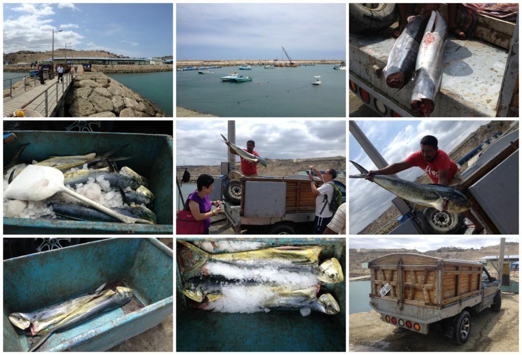 A visit to manta montecristi in ecuador entrepreneur 39 s for Fishing in ecuador