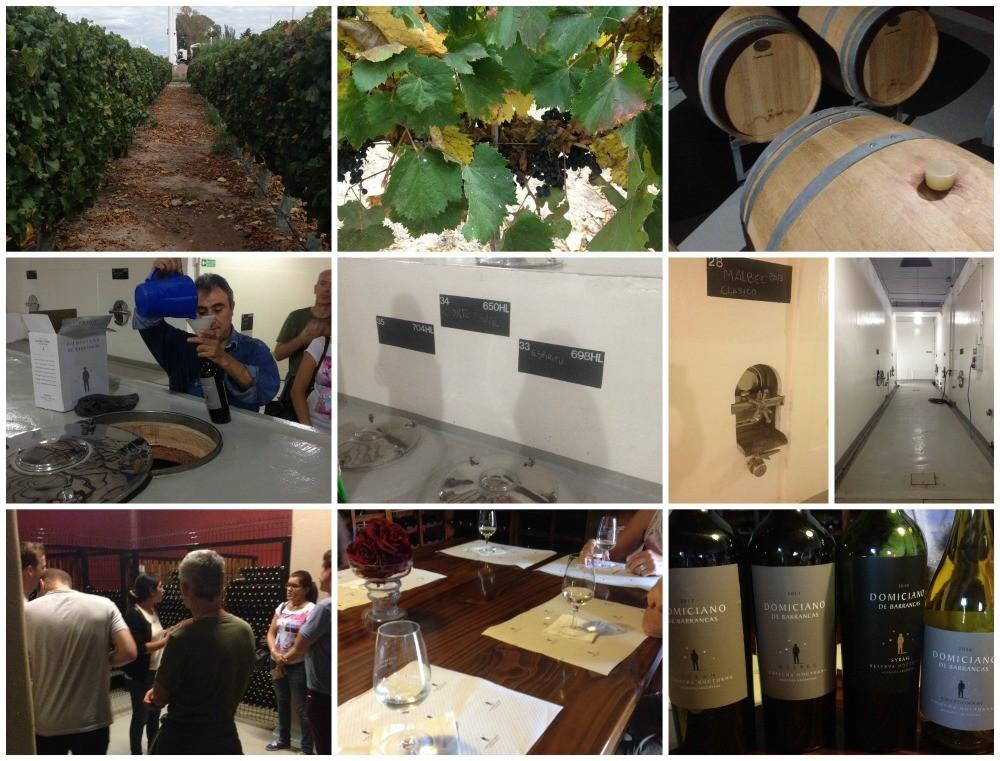 Domiciano de Barrancas winery in Mendoza
