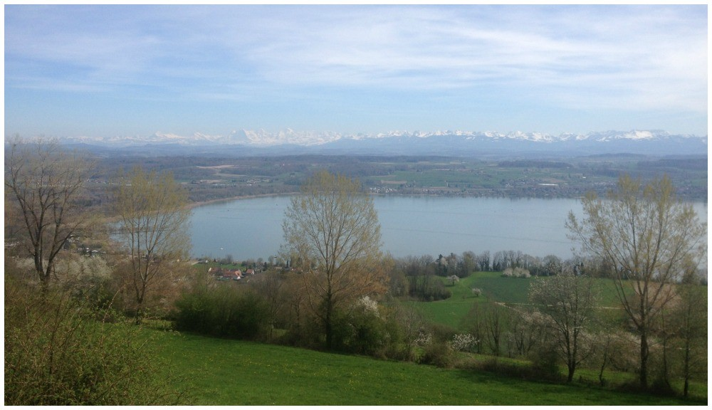 View from Vully