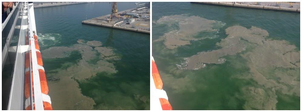 Cruise ship disturbance in Venitian Lagoon