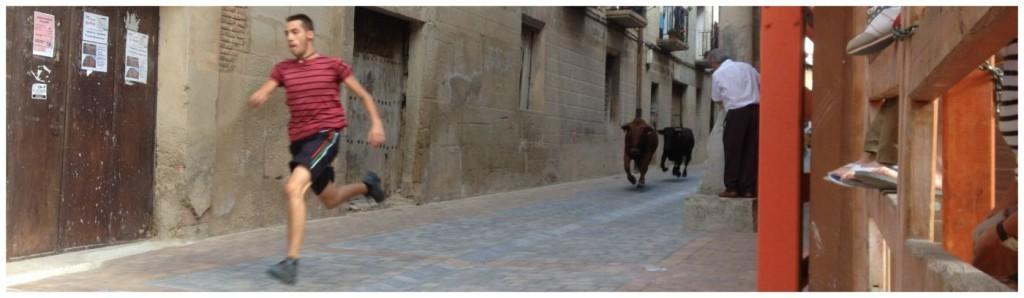 Bull running in Los Arcos