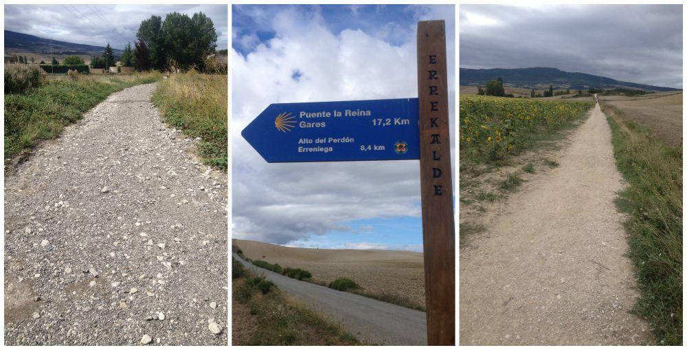 Camino way to Puente La Reina