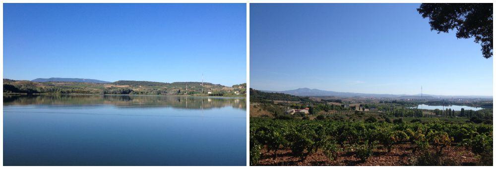 From Logroño to Navarrete
