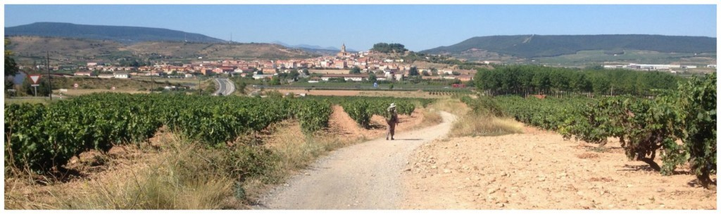 Navarrete on the Camino