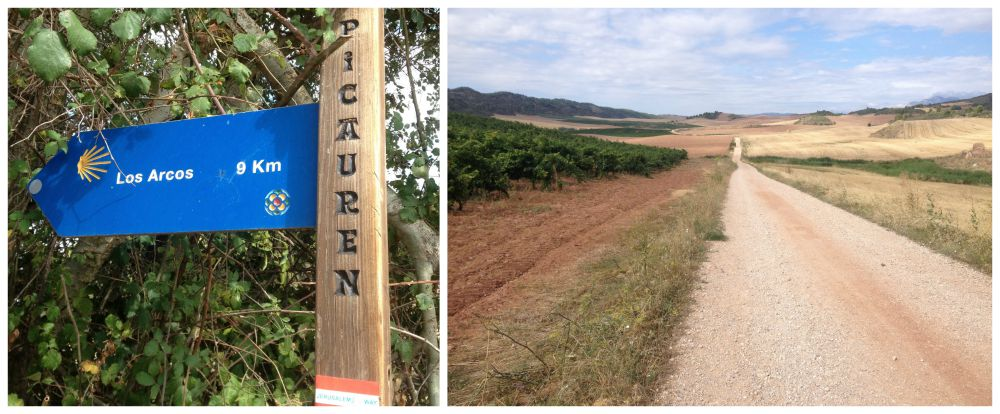 Still 9Kms from Picauren to go to reach Los Arcos on the Camino