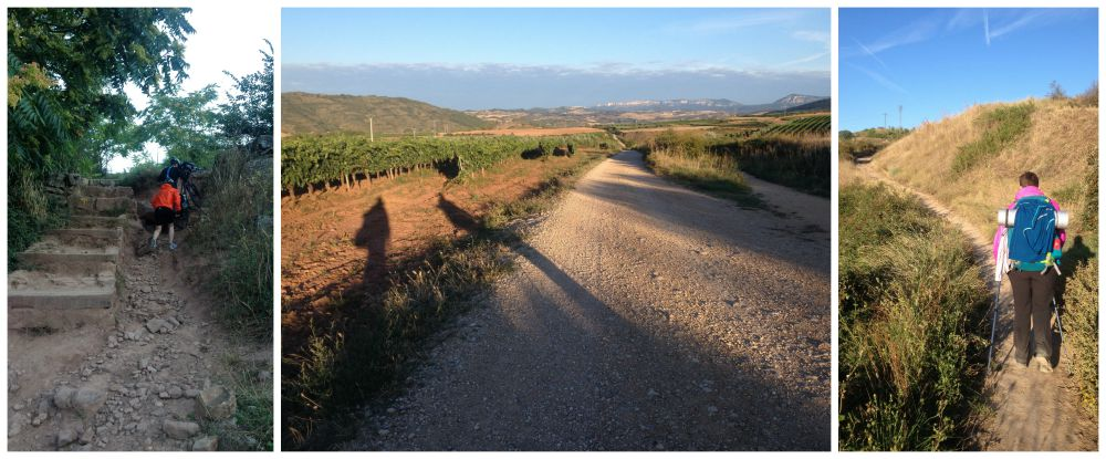 The way on the Camino after Cirauqui 2015