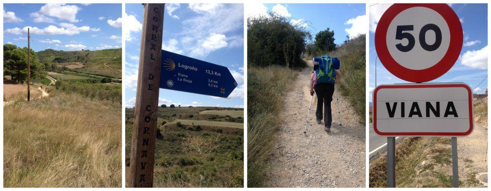 The way to Viana on the Camino