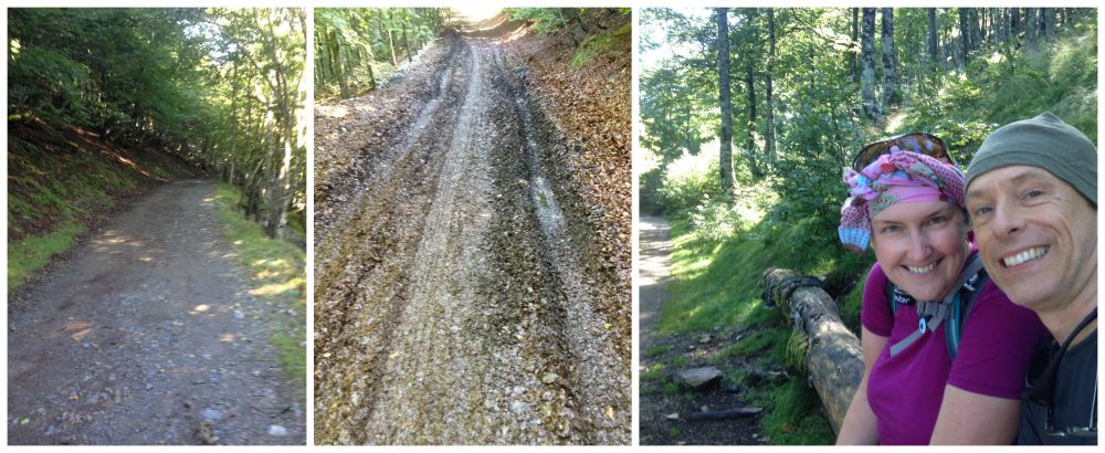 Through a wet leafy forest on the Camino 2015