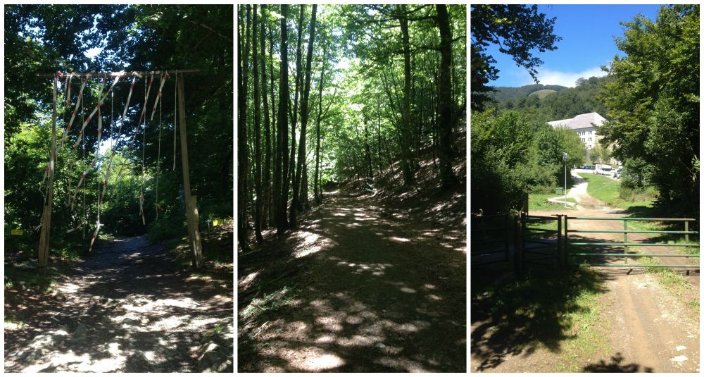 Through the forest and a marker for the French Spanish border and on to Roncesvalles