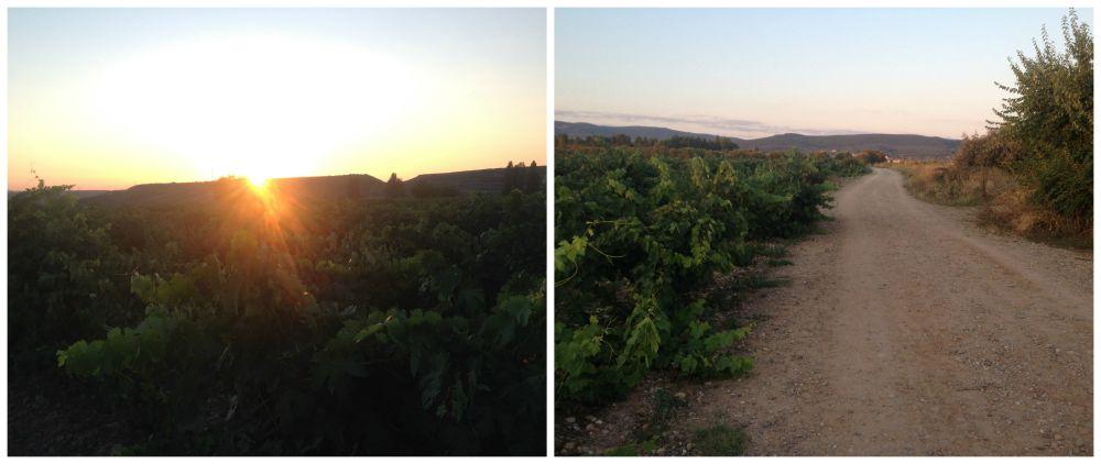 Sunrise leaving Navarrete on the Camino