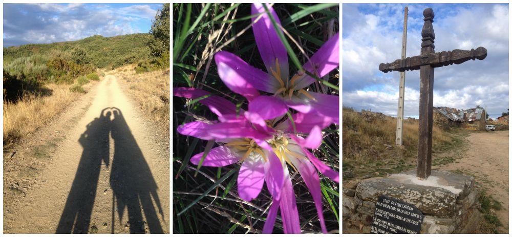 Camino images along the way