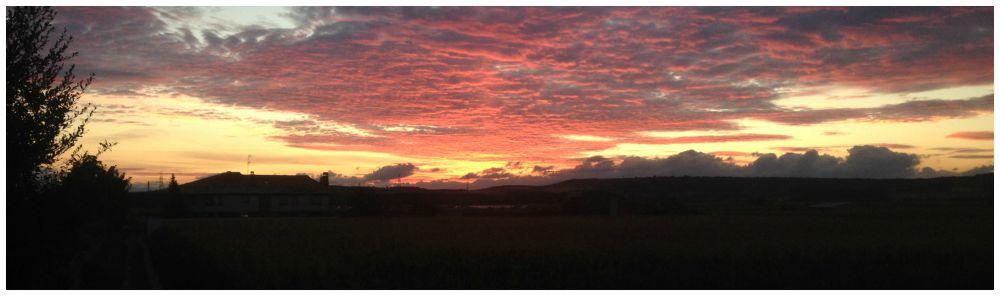 Camino sunset