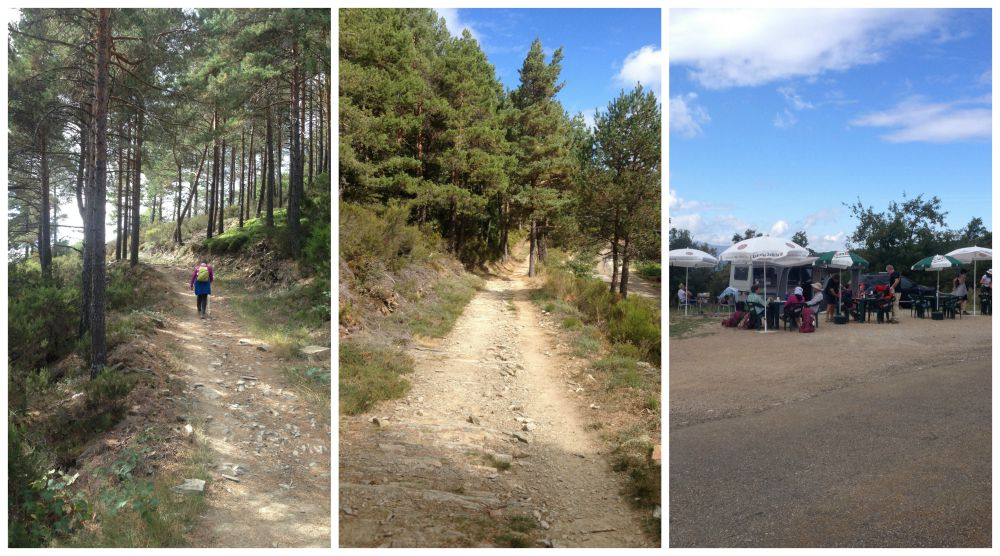 The walk through a small forest then a bar at the roadside