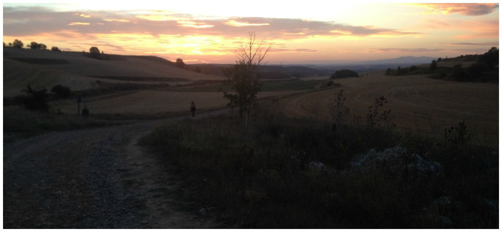 The way of the Camino