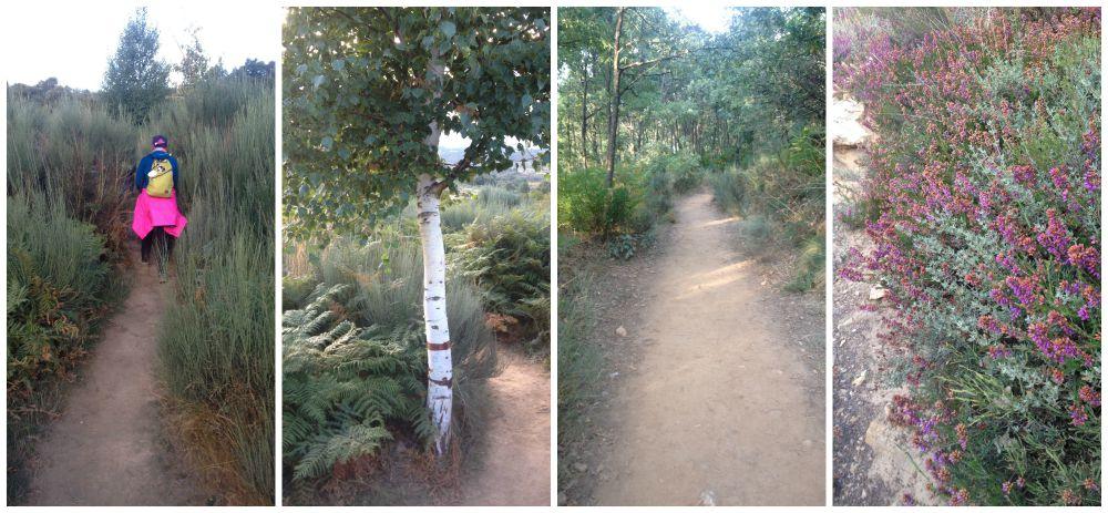 The way on the Camino between Rabanal del Camino and Manjarin