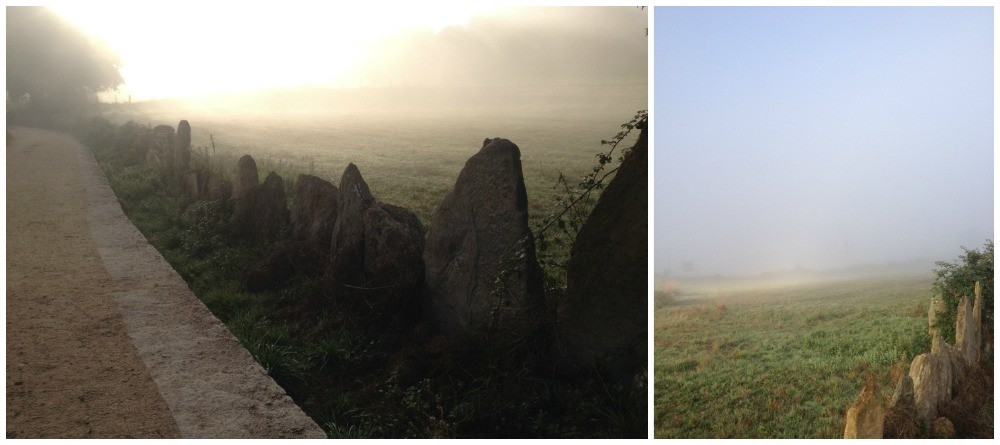 different moods on the camino