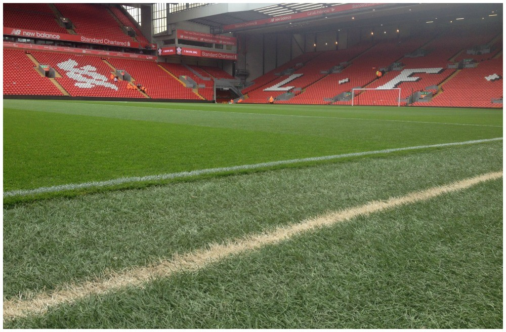 As close as I could get to the Anfield pitch