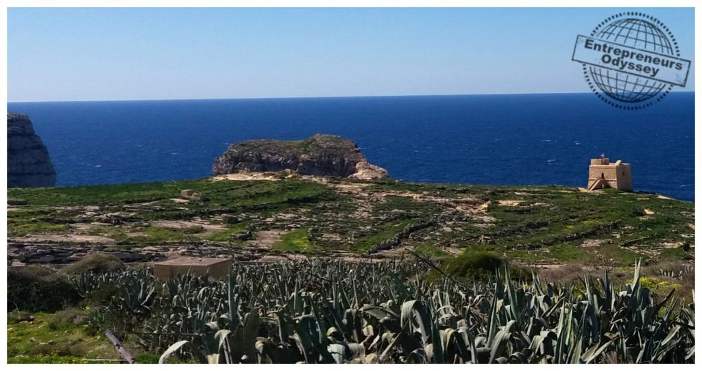 Fungus rock on Gozo