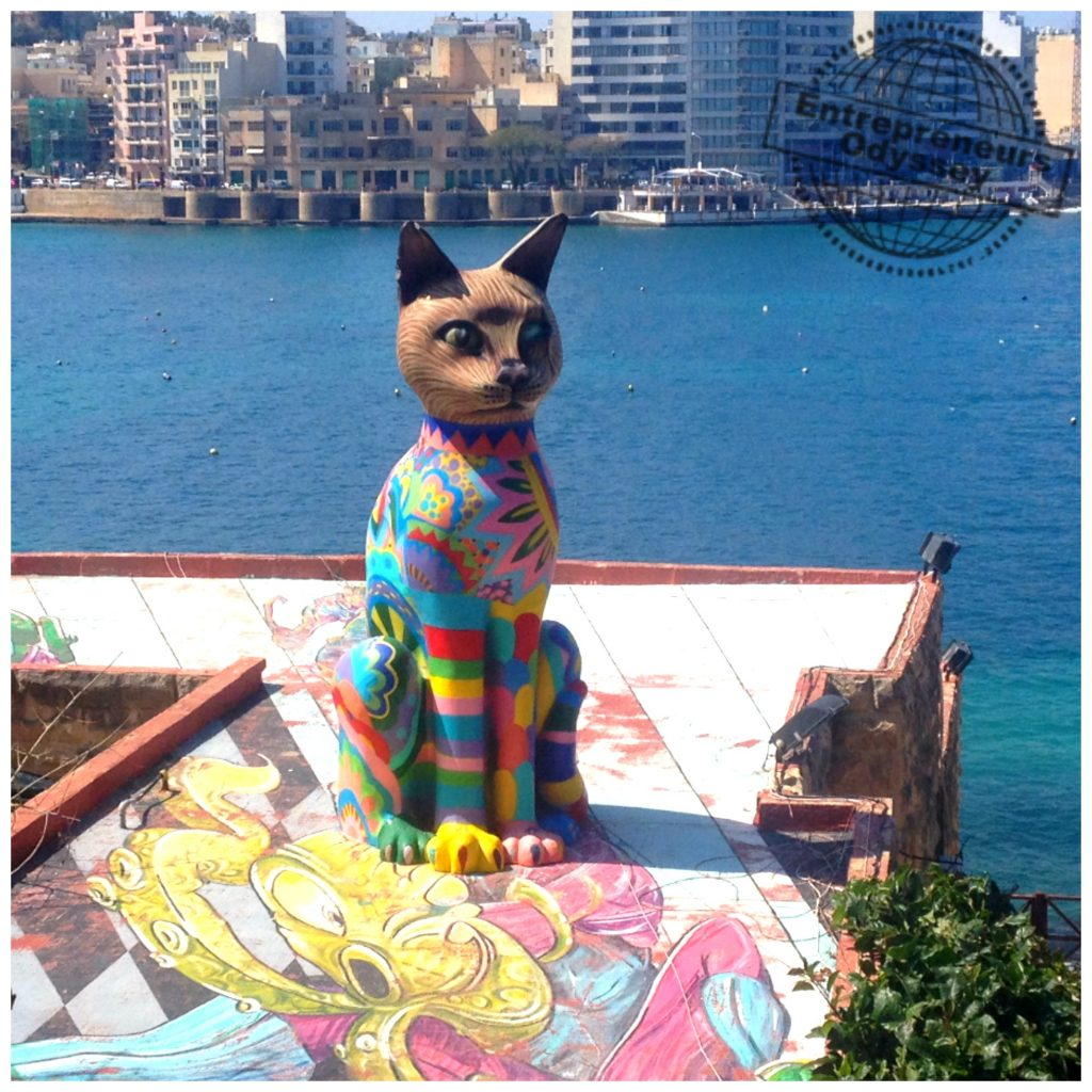 Colourful cat at Independence garden Sliema Malta