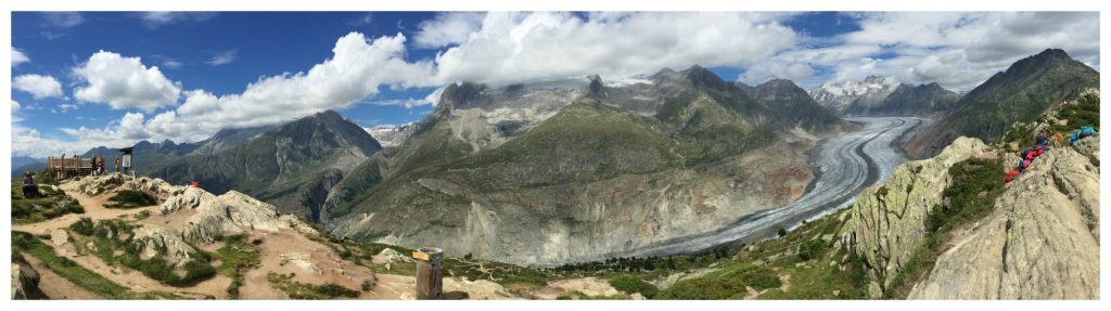 Aletsch Glacier as seen from Mossfluh