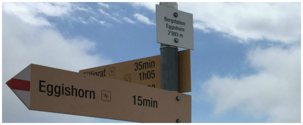 Bergstation Eggishorn @2893m