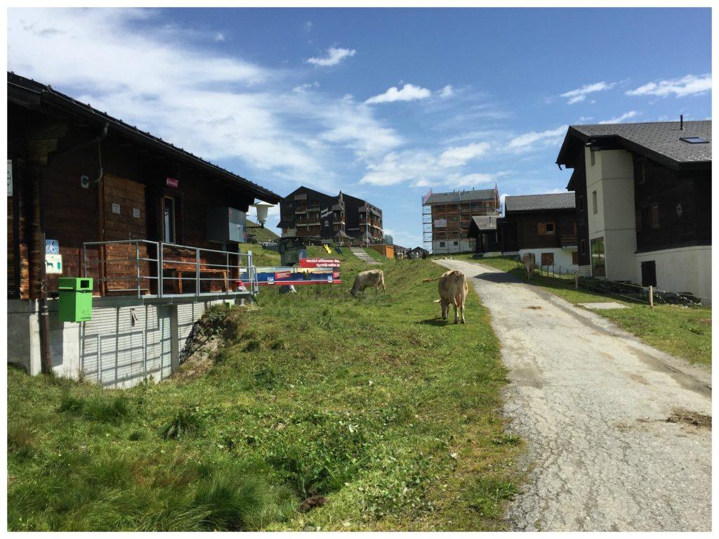 Entering the village of Fiescheralp