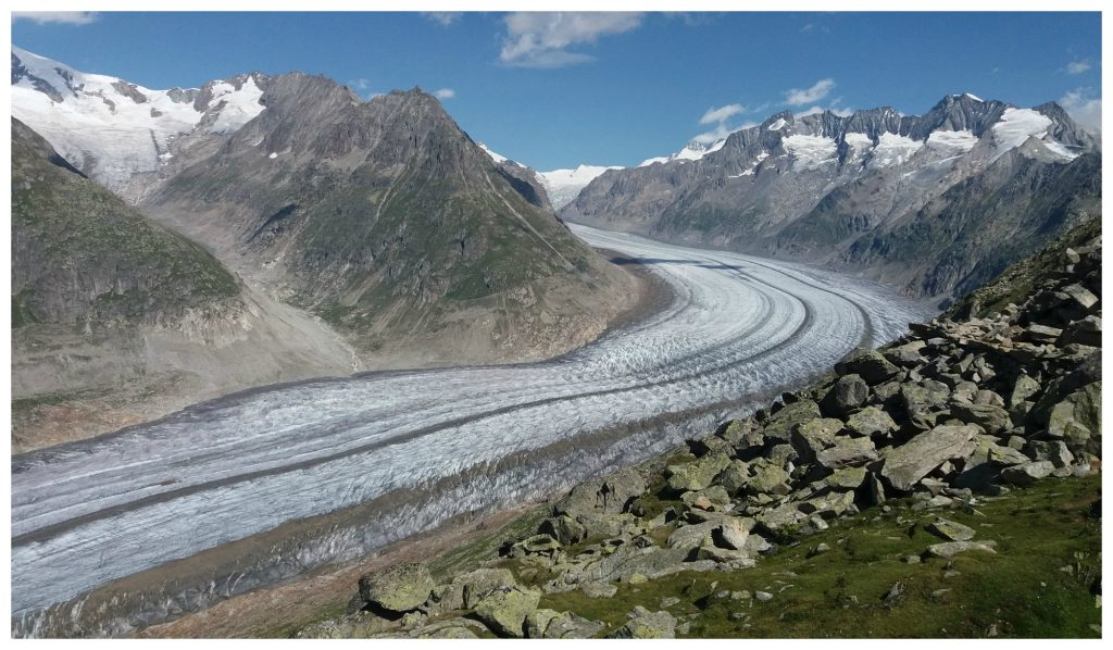 The Aletsch Glacier from the Bettmerhorn
