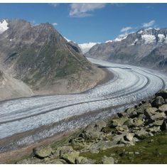 The Aletsch Glacier from the Bettmerhorn