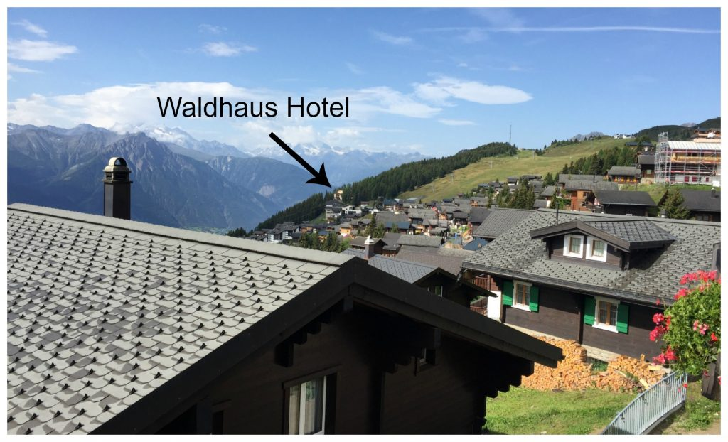 Waldhaus Hotel seen from the Walliserstube Bettmeralp