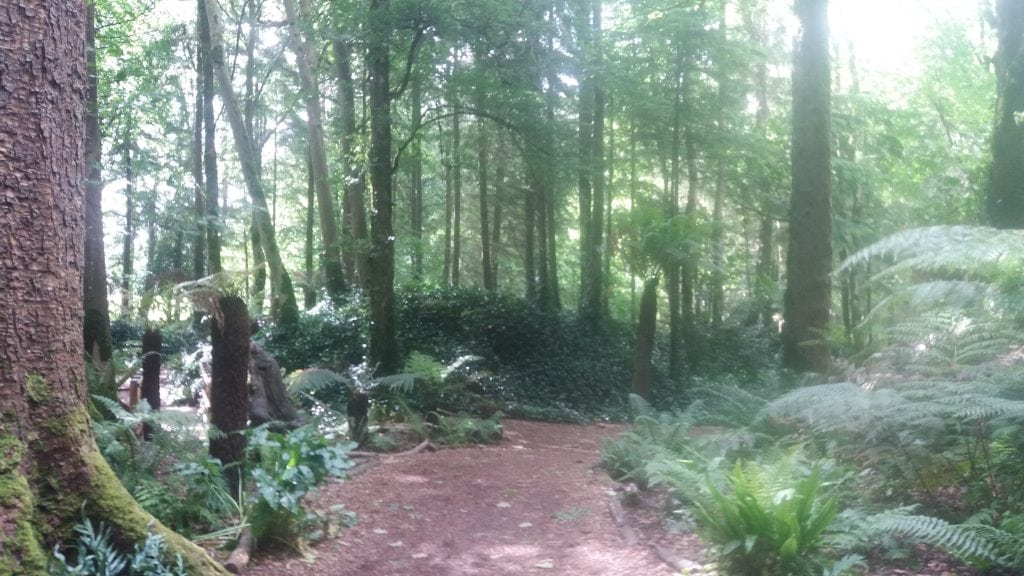The Blarney Garden surrounds