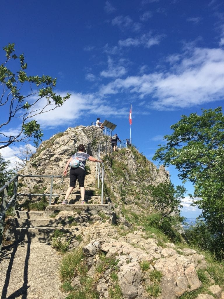 The way up to the top of Belchenflue